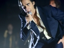 nick cave and the bad seeds state theater 2014 6