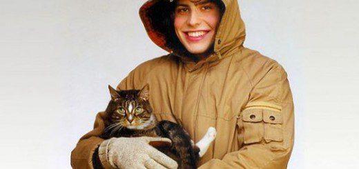 andrew wk cat