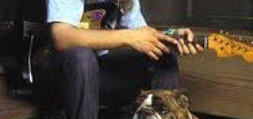 j. mascis dog