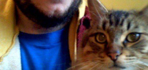 bon iver cat justin vernon