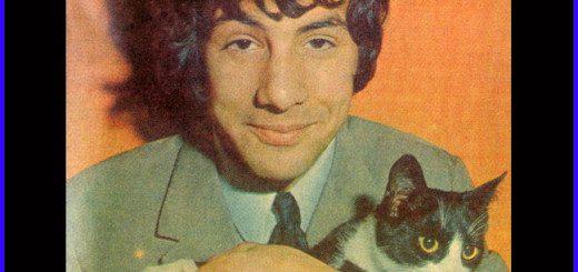 cat stevens cat