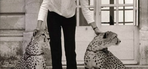 francoise hardy with cat
