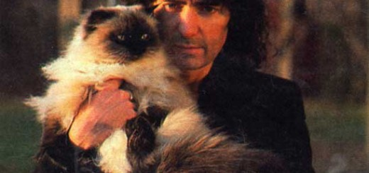 ritchie blackmore cat photo