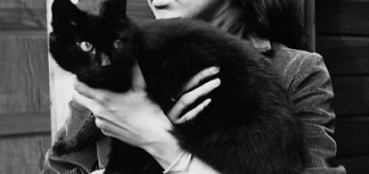 Joan baez cat